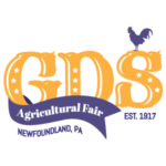 1 Pair of tickets & VIP passes to 2019 GDS Fair